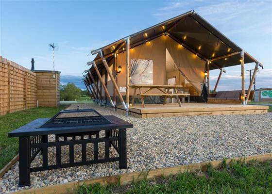 Leopard Safari Tent at Bowbrook Lodges, Pershore
