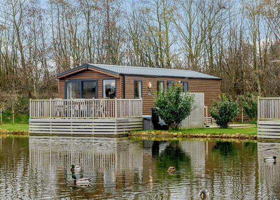 Lime Waterside at Landal Woodland Lakes, Thirsk