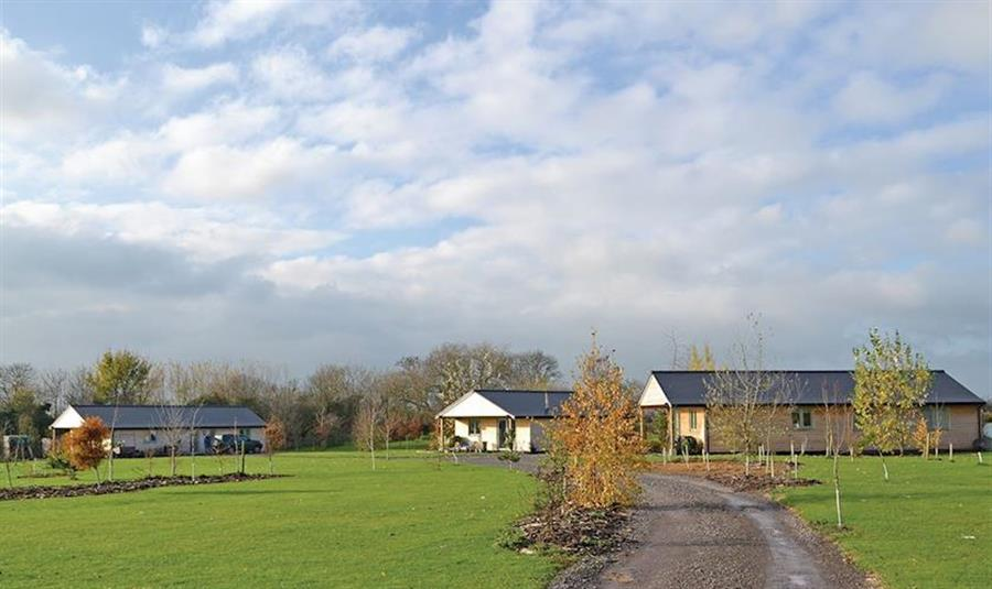 Little Moorland Farm Lodges