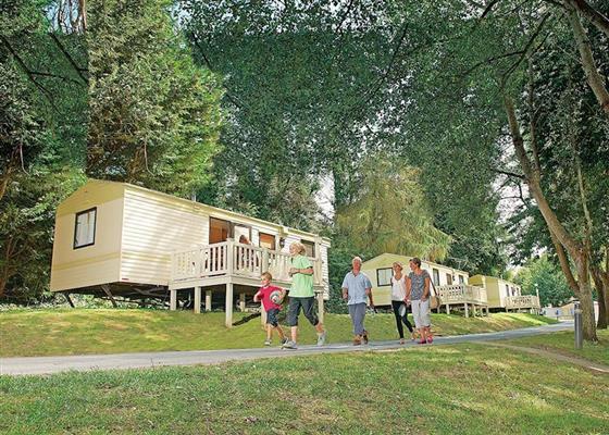Lower Hyde Silver Plus 3 sleeps 8 pet at Lower Hyde, Shanklin