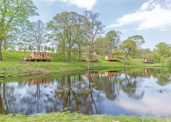 Luna Lodge at Blossom Plantation Pods, Chathill