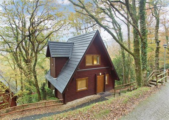 Luxury Woodland Lodge Four VIP at Finlake Holiday Resort, Newton Abbot