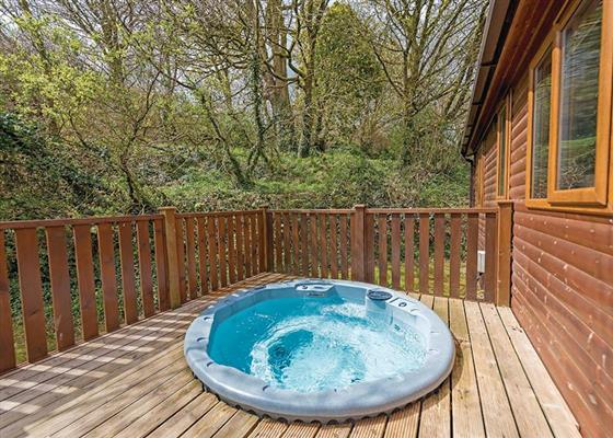 Maple Lodge Plus (Pet) at River Valley Country Park, Penzance
