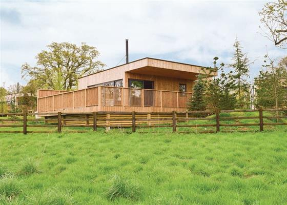 Meadow Lodge 2 at Henlle Hall Woodland Lodges, Oswestry
