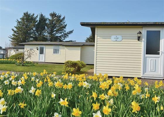 North Lake Lodge Plus at Solway Holiday Village, Wigton