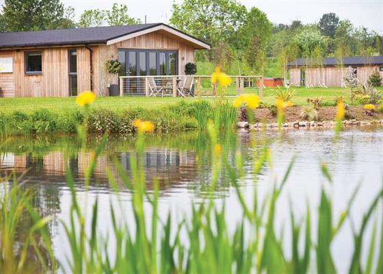 Northallerton Lodge at Cedar Retreats, Ripon
