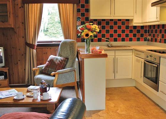 Osprey lodge at Lochanhully Woodland Resort, Carrbridge
