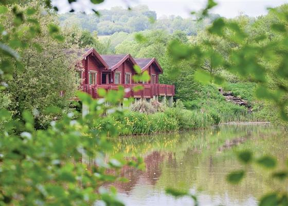 Otter Island Lodge at Otter Falls, Honiton