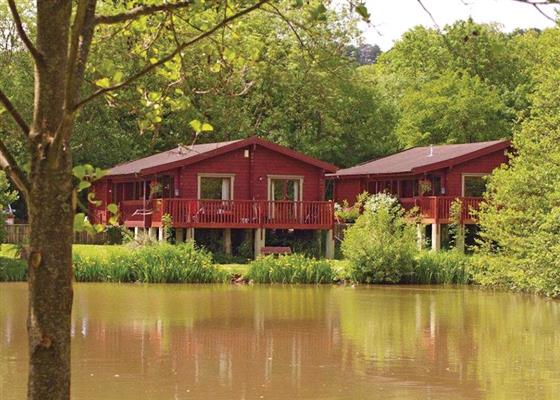 Otterfalls Lodge VIP at Otter Falls, Honiton