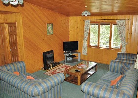 Penllwyn Foxglove at Penllwyn Lodges, Montgomery