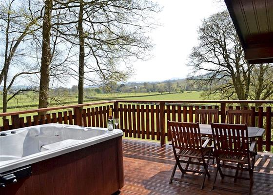 Penllwyn Hawthorn VIP at Penllwyn Lodges, Montgomery