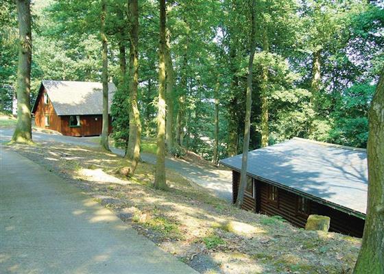 Penllwyn Pines at Penllwyn Lodges, Montgomery