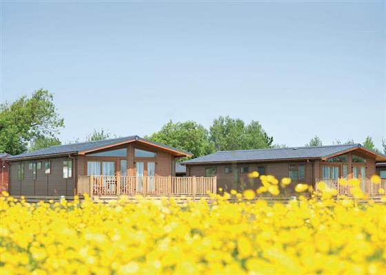 Platinum Lodge at Sandy Glade Holiday Park, Burnham-on-Sea