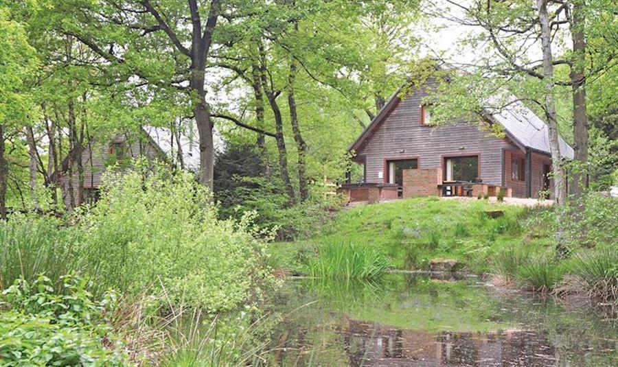 Ramshorn Estate Woodland Lodges