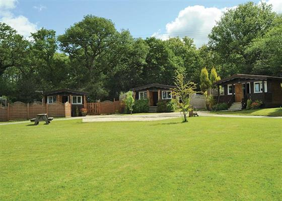 Red Kite Lodge at Heronstone Lodges, Swansea