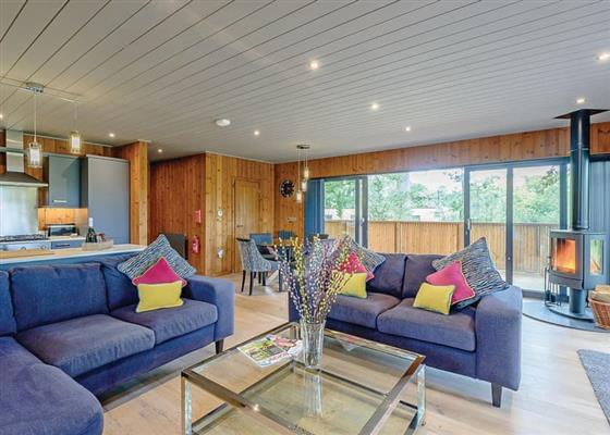 Ruby Meadow at Henlle Hall Woodland Lodges, Oswestry