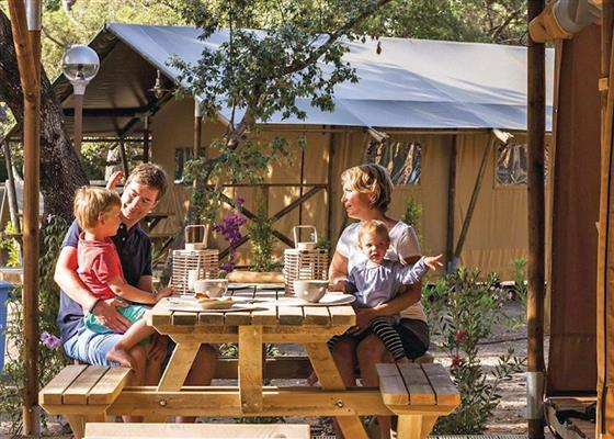 Safari Tent at Maesmawr Farm Resort, Caersws