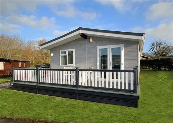 Select Lodge Plus 2 at Oakdene Forest, Ringwood