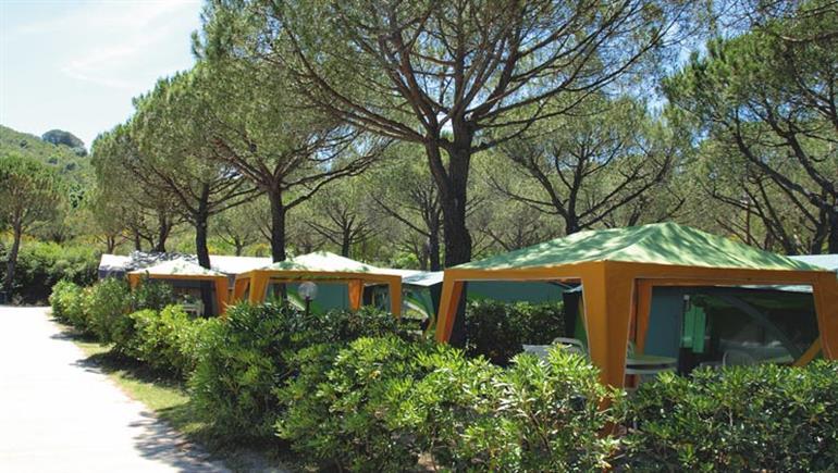 Setting of Ville Degli Ulivi Campsite, Elba in Italy