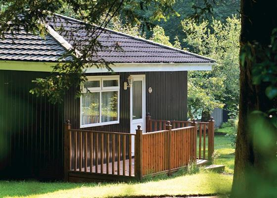 SI 3 Bed Bronze Swiss Chalet at St Ives Holiday Village, Saint Ives