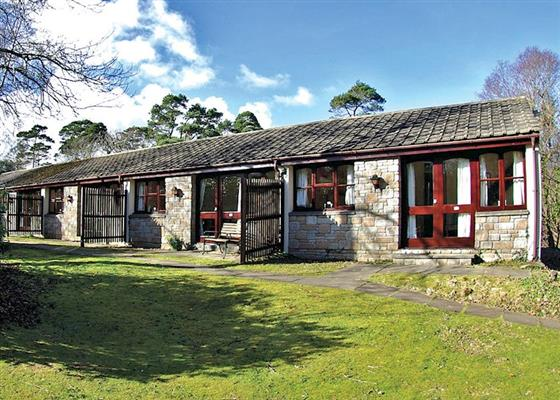 SI 3 Bed Silver Woodland Lodge at St Ives Holiday Village, Saint Ives