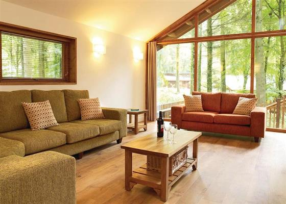 Silver Birch 2 at Sherwood Forest Lodges, Mansfield