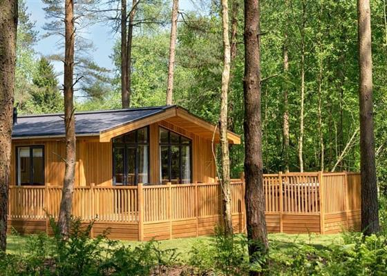 Spinney 1 Spa at Landal Darwin Forest, Matlock