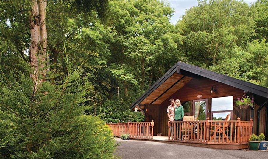 Spring Wood Lodges
