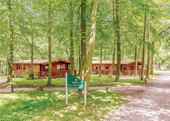 Stamford at Landal Kenwick Woods, Louth