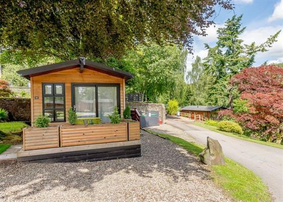 Studio Lodge 1 at Erigmore Leisure Park, Dunkeld