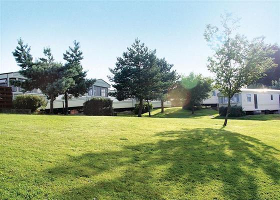 Sunnyglen Oak at Sunnyvale Holiday Park, Saundersfoot