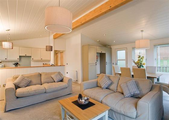 Superior Country Six Platinum (Pet) at Finlake Lodges, Newton Abbot