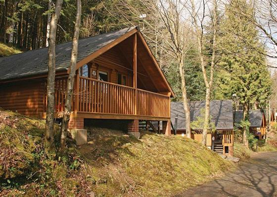 The Hideaway at Bulworthy Forest Lodges, Bideford