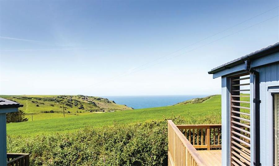 The Salcombe Retreat