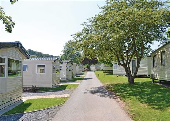 The Teign WF at Cofton Holidays, Exeter