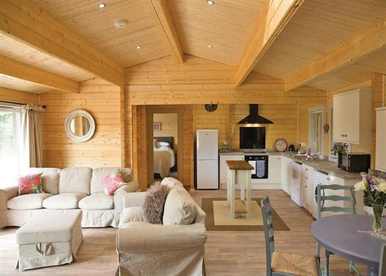 Treetops at Peckmoor Farm Lodges, Crewkerne