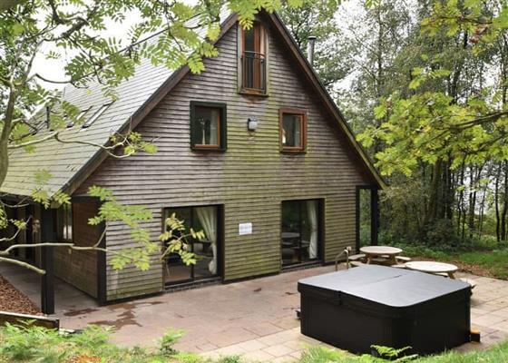 Weaver at Ramshorn Estate Woodland Lodges, Stoke-on-Trent