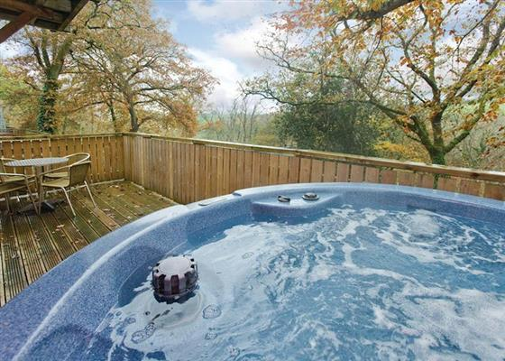 Woodland Deluxe Lodge 6 at Finlake Lodges, Newton Abbot