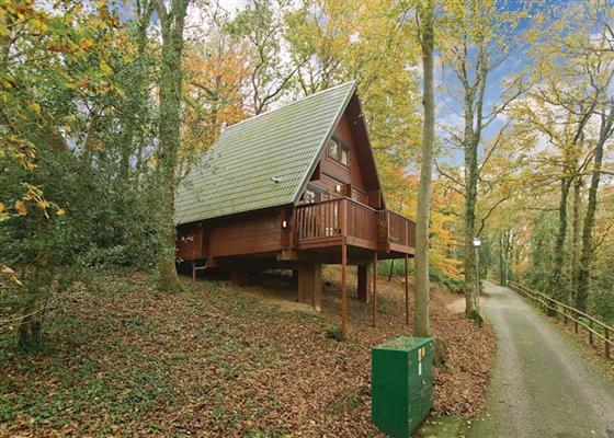 Woodland Lodge Four at Finlake Lodges, Newton Abbot