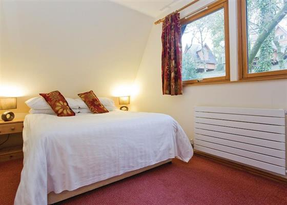 Woodland Premier Lodge Six at Finlake Lodges, Newton Abbot