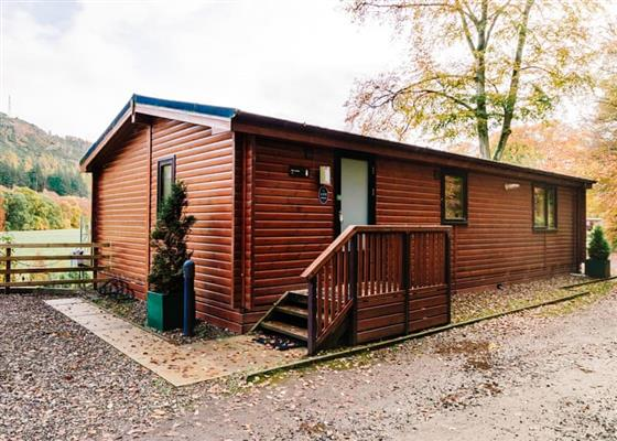 Woodland View Lodge 3 (Pet) at Erigmore Leisure Park, Dunkeld