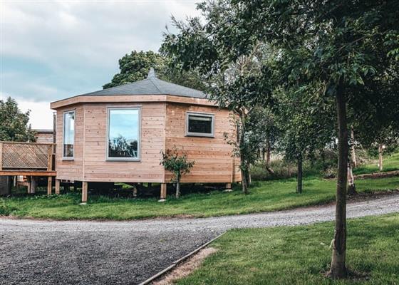 Zen Lodge at Blossom Plantation Pods, Chathill